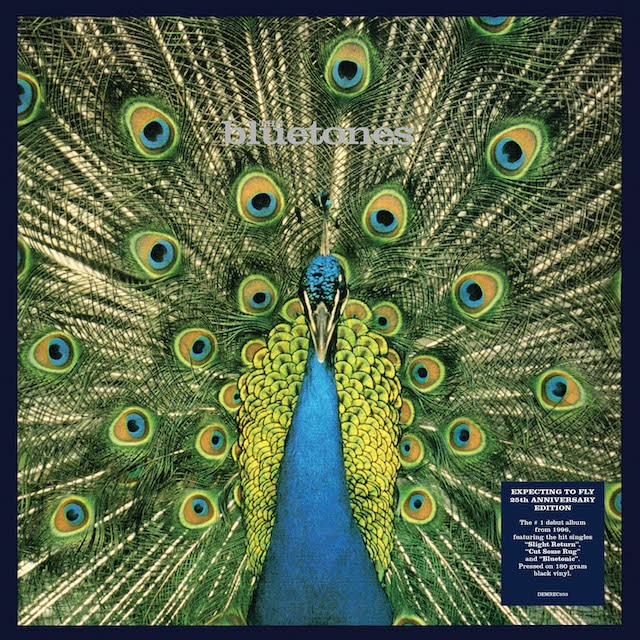 Expecting To Fly – 25th Anniversary Edition (1LP 180g Black Vinyl – Gatefold)