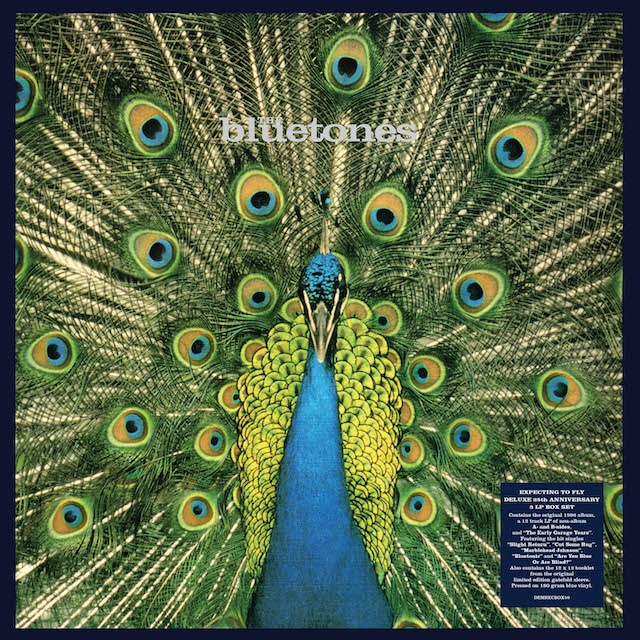 Expecting To Fly – 25th Anniversary Edition (180g Blue Vinyl)